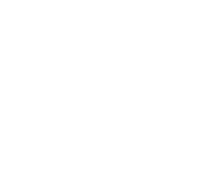 20 Feet